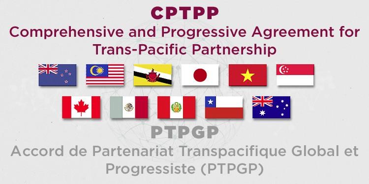 https://www.acte-international.com/upload/docs/image/jpeg/2018-11/cptpp-ptpgp.jpg.associated/th-1000x375-cptpp-ptpgp.jpg.jpg